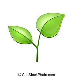 Ökologie-Konzept Icon mit Hochglanzgrün Blätter Vektor.