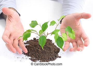 Ökologisches Konzept