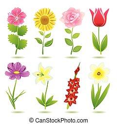 8 Blumen-Ikonen
