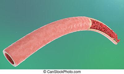 abbildung, 3d, innenseite, wissenschaftlich, concept., blut, microbiological, vein., sauerstoff, zellen, querschnitt, medizin, nutrients., bereicherung, arterie, flow., gesunde, arteriell, rotes , wichtig