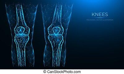 abbildung, linien, anatomy., gelenke, knie, punkte, gemacht, freigestellt, abstrakt, blaues, hintergrund., menschliche , röntgenaufnahme, polygonal