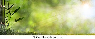 Abtrünnige, neblige natürliche Hintergründe mit Bambusfoliage