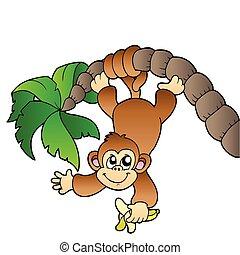 Affe hängt an Palme