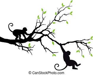 Affen auf Baum, Vektor