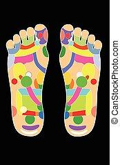 Akupunktur - Fußschema.