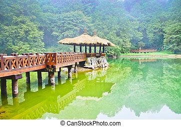 Alishan-Waldpark, Taiwan.