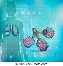 Alveoli gehört zum Atemsystem. Lung Silhouette im Hintergrund.