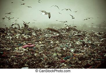 Apokalyptische Szene von Vögeln, die über die Müllhalde fliegen.
