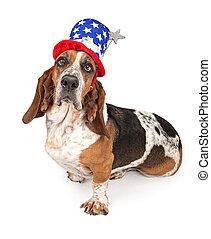 Basset-Hundhund mit einem Unabhängigkeitstagshut