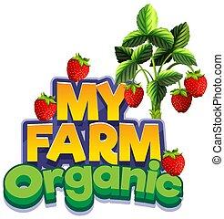 bauernhof, wort, mein, frische erdbeeren, design, schriftart