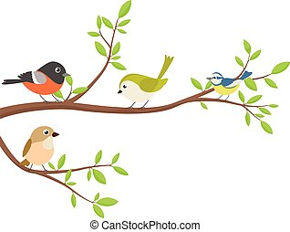 baum- niederlassung, vögel, reizend