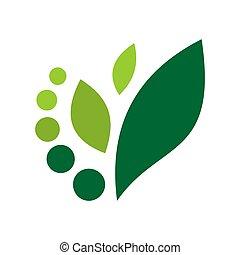 begriff, abstrakt, vektor, blatt, natur, ikone, grün, logo