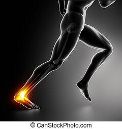 begriff, sport, knöchel, achilles, verletzung, absatz