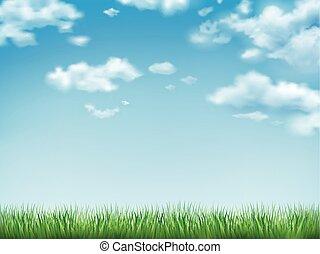 blauer himmel, gras, grünes feld