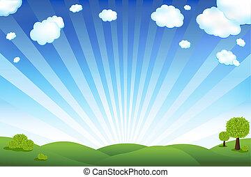 blaues, feld, grüner himmel