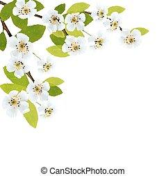 Blossender Baum-Brunch mit Frühlingsblumen. Vector Illustration.