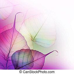 Blumendesign. Blätter