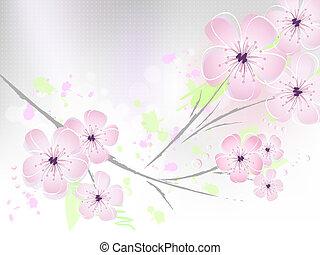 Blumenhintergrund - Kirschblüten