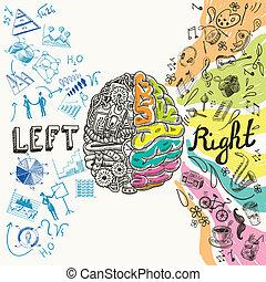 Brain Hemisphären Sketch.