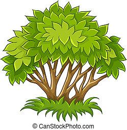 Bush mit grünen Blättern
