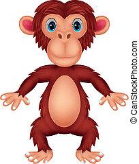 Chimpanzeee-Cartoon.