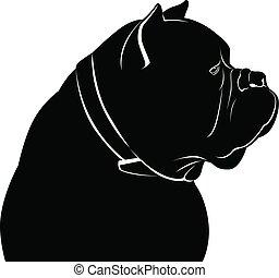 corso, krückstock, hund