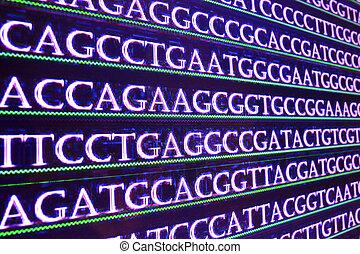 Das Genom Sequenzieren.