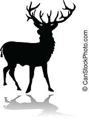Deer silhouette mit Schatten