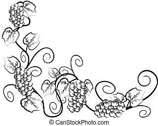 Der Hintergrund von Grape-Reben