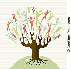 Die Diversitätsbaum-Sets