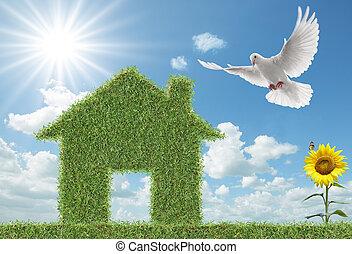 Dove und grünes Grashaus