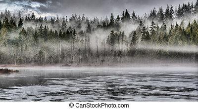 Dramatische Nebel im Wald entlang des Sees.