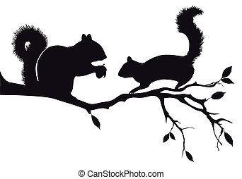 Eichhörnchen auf Baum, Vektor