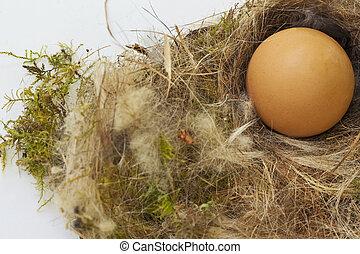 Eier im Stroh.