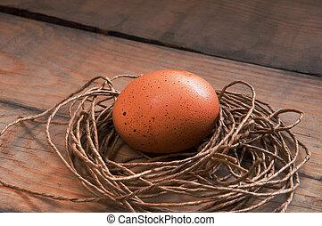 Eier in einem Nest.