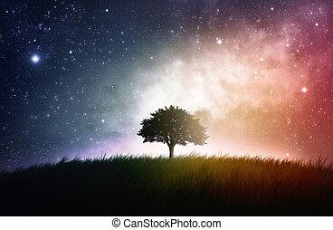 Ein Baumraum Hintergrund.