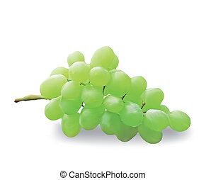 Ein Haufen frischer Trauben isoliert auf weiß. Vector