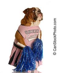 Ein Hund als Cheerleader verkleidet