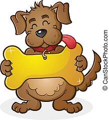Ein Hund mit Riesenkragenschild.