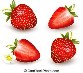 Ein paar frische Erdbeeren. Vector Illustration.