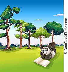 Ein Panda liegt im Gras und liest ein Buch