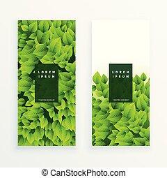 Ein Satz grüner Blätter Banner.