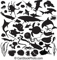Ein Set von Silhouettes von Meeresinhabi