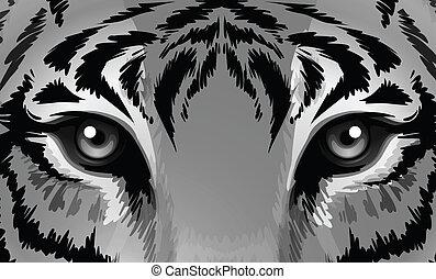 Ein Tiger mit scharfen Augen.