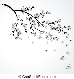 Ein Zweig japanischer Kirsche