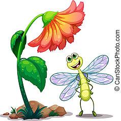 Eine lächelnde Libelle unter der riesigen Blume