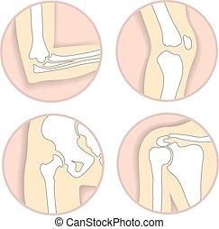 Eine Reihe menschlicher Gelenke, Ellbogen, Kniegelenke, Hüfte und Schulter, Knochenstruktur. Emblem Anatomie und orthopädisches Zeichen für medizinisches diagnostisches Zentrum, Vektorgrafik.