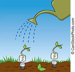Er züchtet grüne Ideen