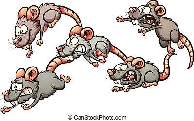 erschrocken, rennender , ratten