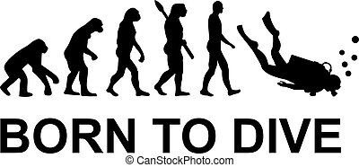 Evolution, geboren zum Tauchen.